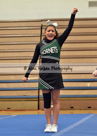 Cheer at LCC - Williamston varsity - Round 2 - Jan 25