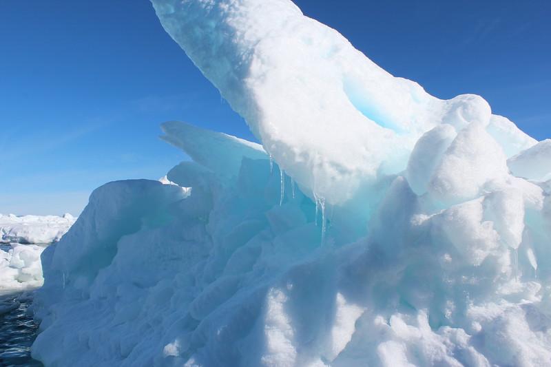 Antarctica 015.JPG