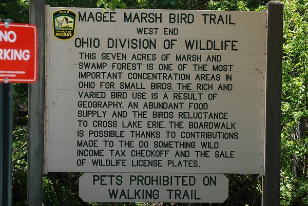 Magee Marsh 2010