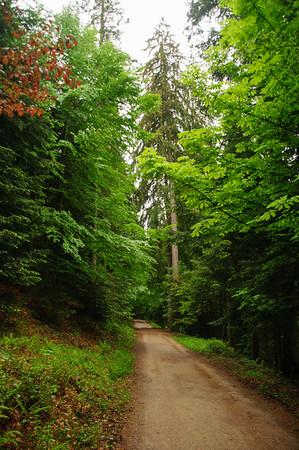 04 Freudenstadt-Zwieselberg (10.5.18)