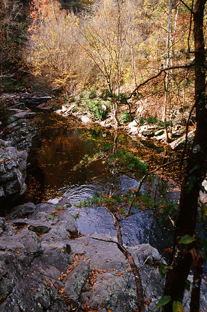 Smokie Mountain National Park