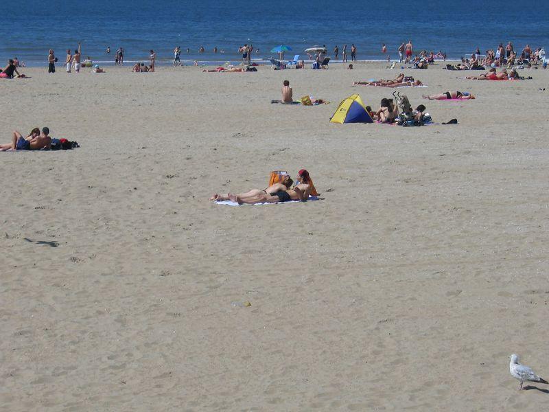 beach_03.jpg