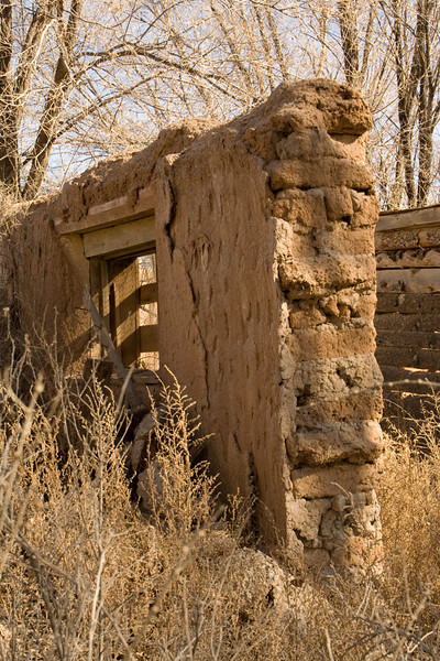 This is what happens if you don't maintain your adobe house. This is near the place we stayed in Taos.