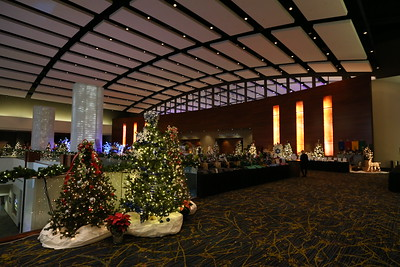 The 2018 Festival of Trees Gala Highlights ... 11/20/2018