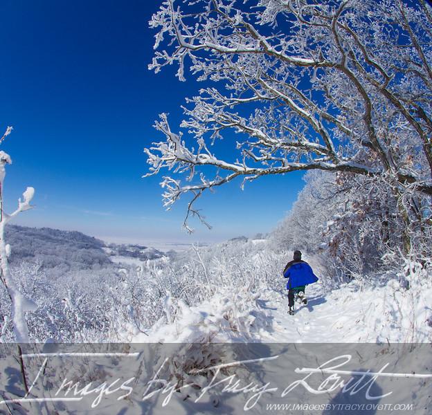 snow_3496 copy.jpg