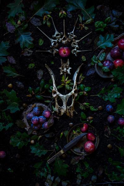 Fruit & Bones