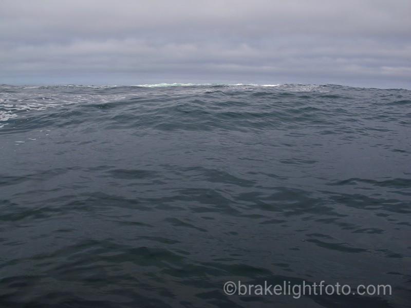 Reef off Cape Parkins