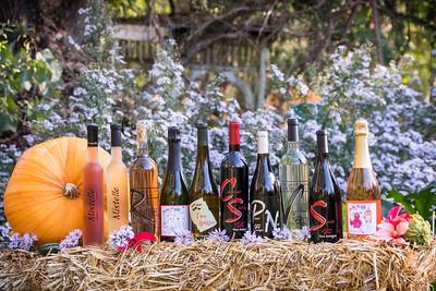 Bottle LineUp Fall 2020