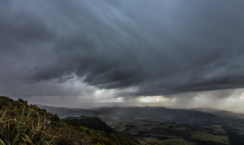 Dunedin Storm