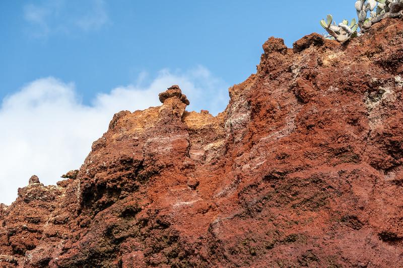Galapagos-3491.jpg