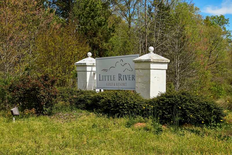 4-AprilLittle-River-April-2020-5.jpg