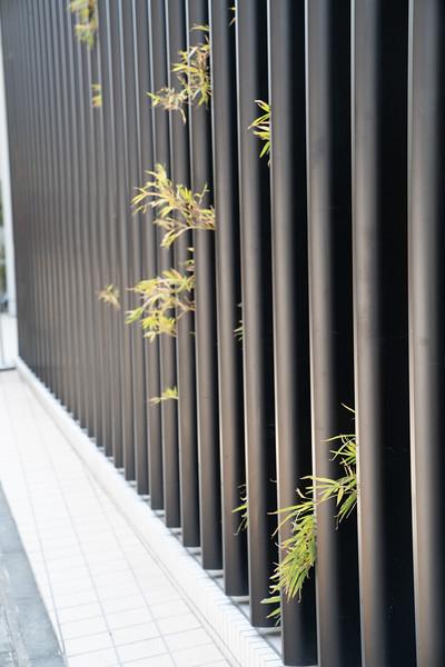 20190411-JapanTour-4151.jpg