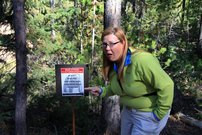 Laura Bear Attack.jpg