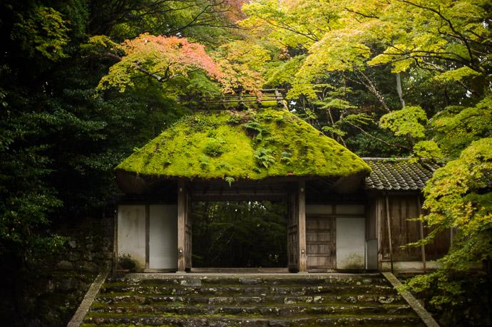 Honen-in Temple image copyright Jeffrey Friedl