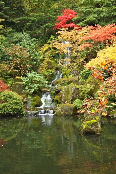 Portland Japanese Garden  11-11-11  3573.jpg