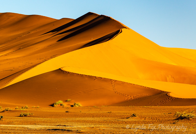Large Red Dunes