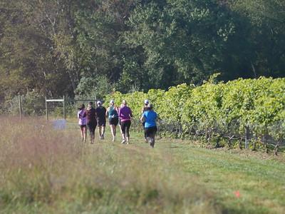 Run the Vineyards White Horse 10K and 5K