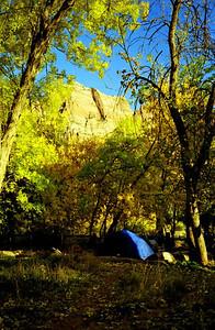 39 Camping at Zion NP.jpg