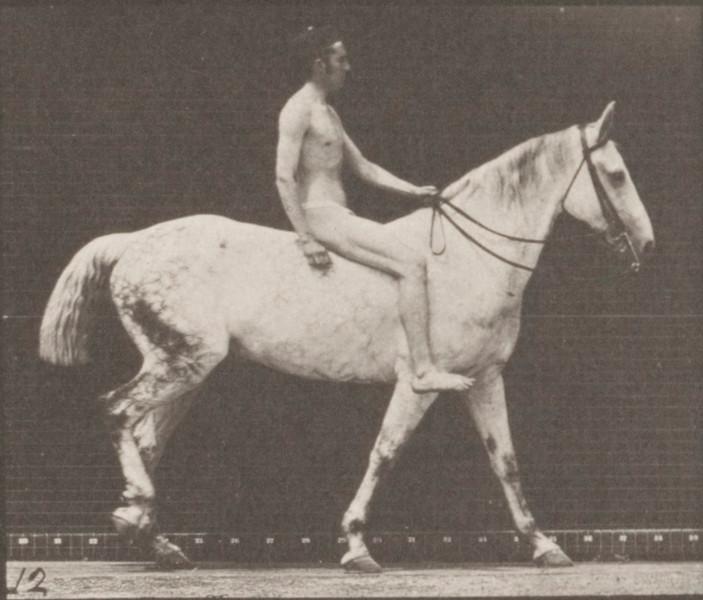 Horse Smith walking bareback with nude rider