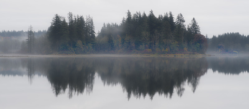 fog, reflections, lacamas lake