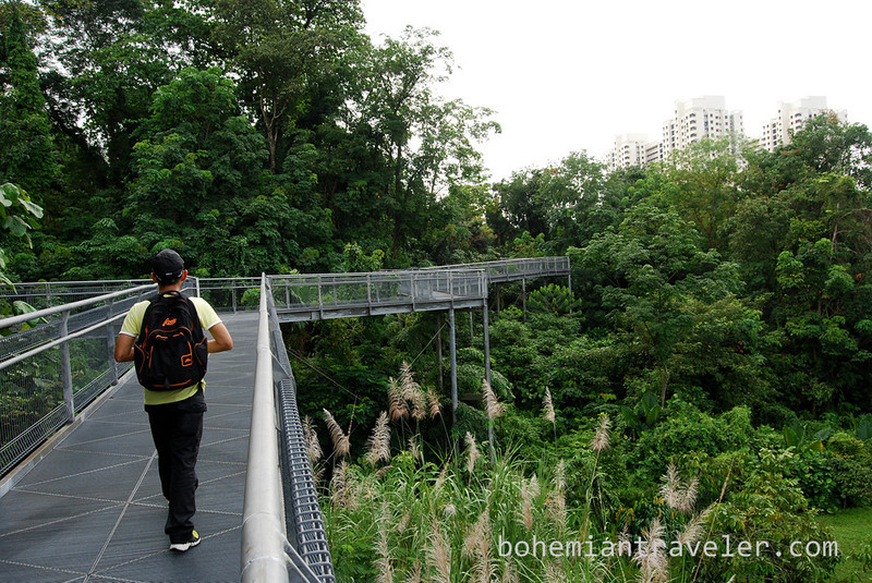 Hiking in the Souhtern Ridges (4).jpg
