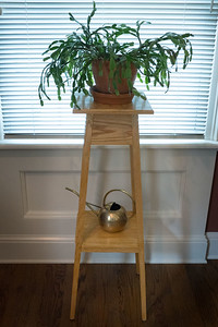 Shaker Style Oak Plant Stand