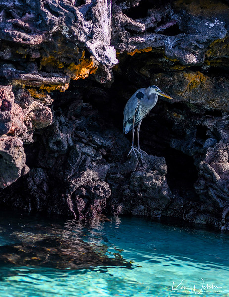 2018 Sombrero Island-3.jpg