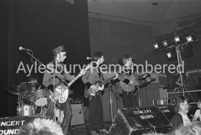 The Flamin' Groovies, June 3rd 1978