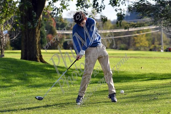 Berks Catholic Golf 2018 - 2019