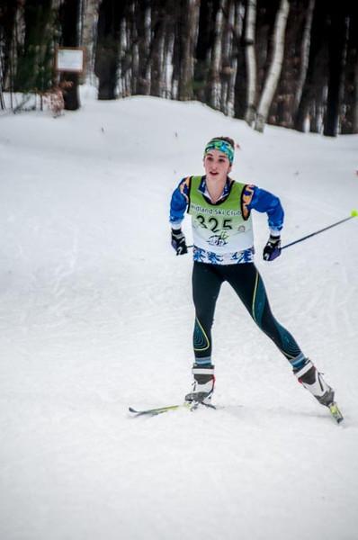 Snow Dog Races 2014