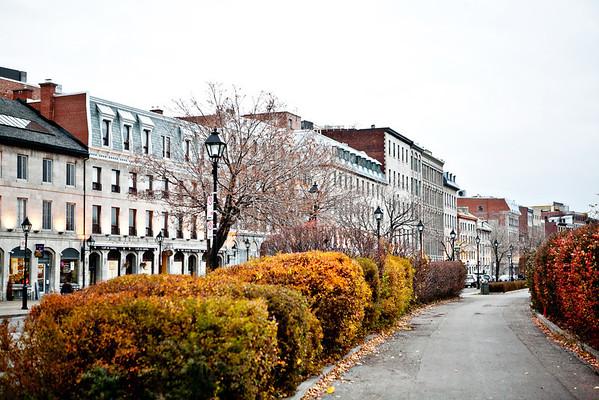 Montréal 2011