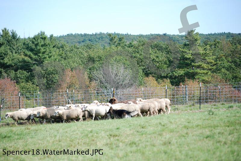 Spencer18.WaterMarked.JPG