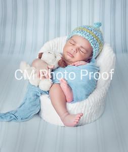 (Winnipeg Newborn Photography 5 19