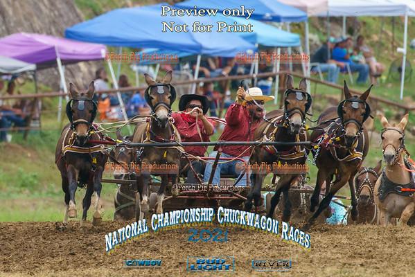 Sunday 4up Mules
