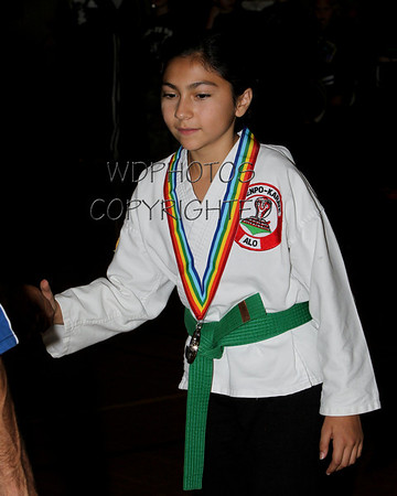 2011 BSSG Karate Awards.