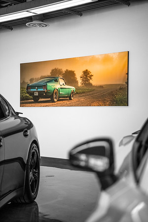 Mustang Canvas