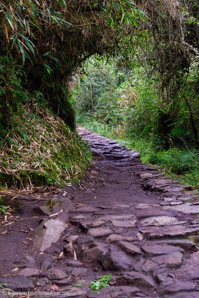 06.20_Machu Picchu-7602.jpg