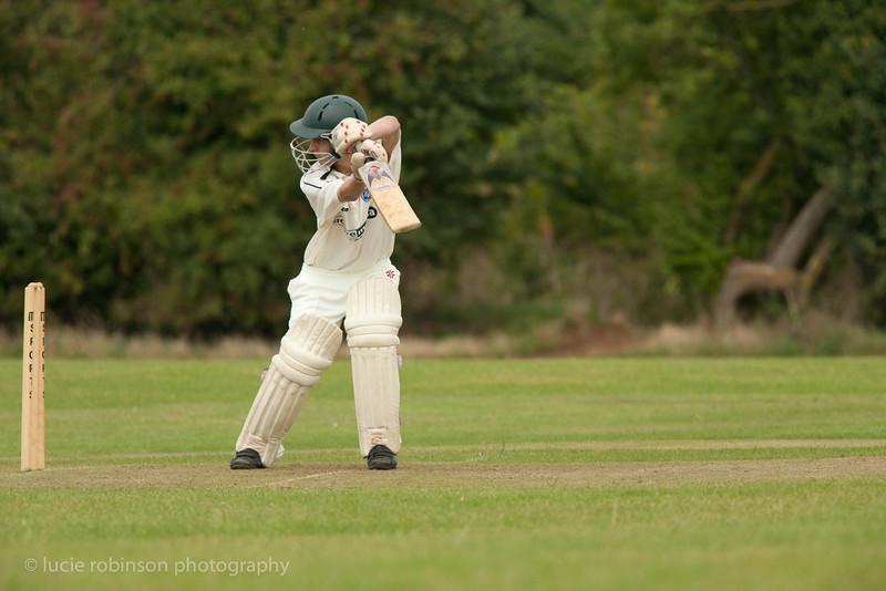 110820 - cricket - 250.jpg