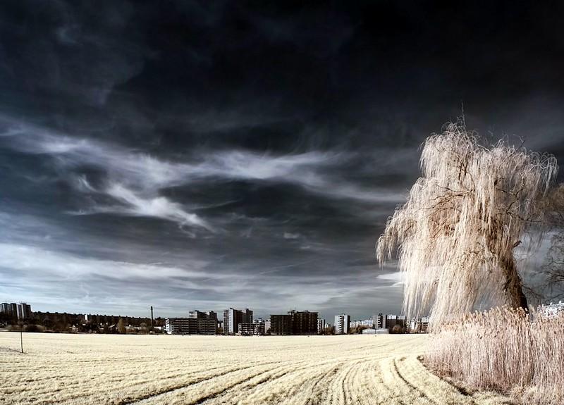 IMG_8301_Panorama.jpg