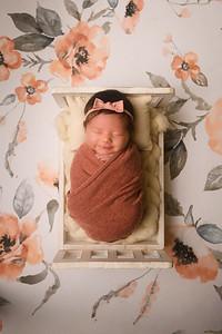 Molly Newborn