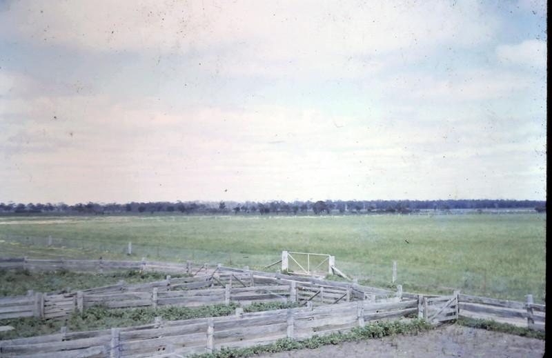 1966-9 (10) Sheep yards @ Akeringa.JPG