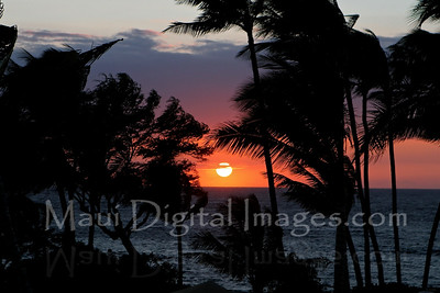 A Trip Around Maui
