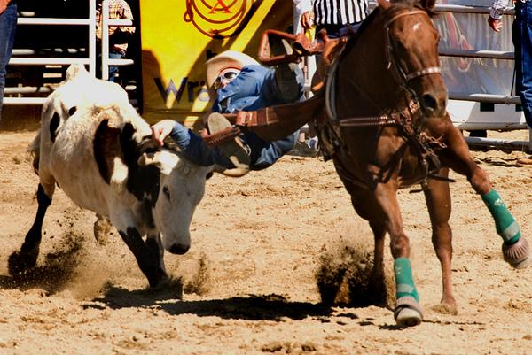 San Dimas Rodeo 10