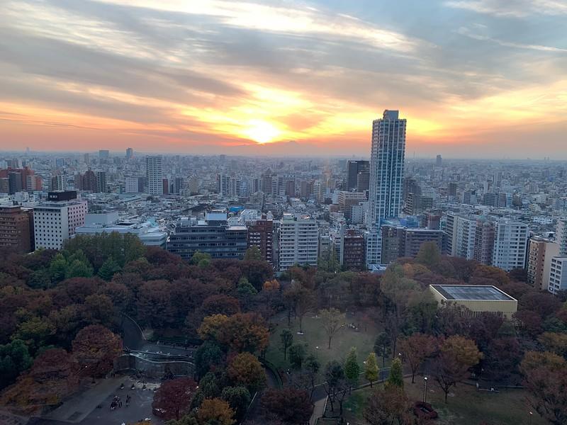 Hyatt Regency Tokyo Beautiful Views