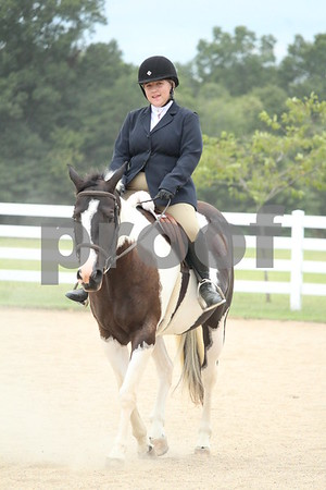 JR Pleasure Horse