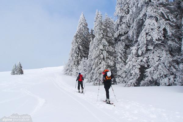Herzogenhorn ski tour, Baden-Württemberg 2012-01-25