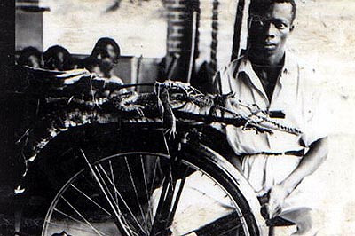 Jacare' e cobra amarrados a uma bicicleta