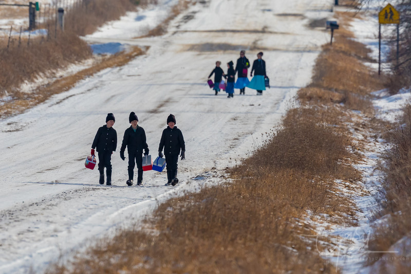 Amish School Children after School in Michigan