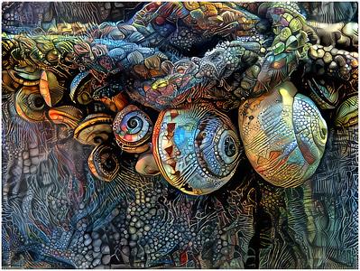 Still Life Fantasy - Stones and Shells