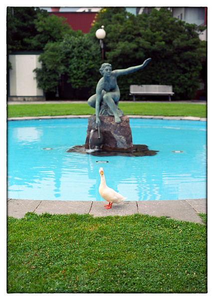 1-duck-fountain-Ektar.jpg